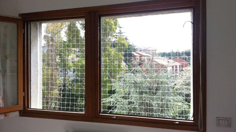 Reti protettetive bambini gatti finestre