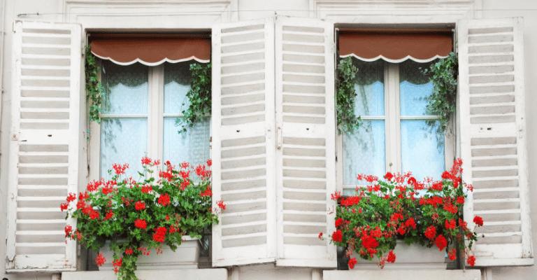 Reti protezione bambini e gatti finestre