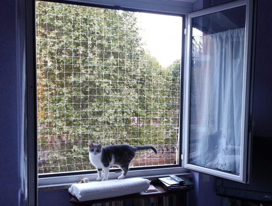 Reti protettive anticaduta per finestre