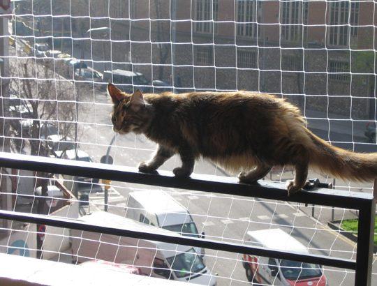 Reti protettive anticaduta per balconi